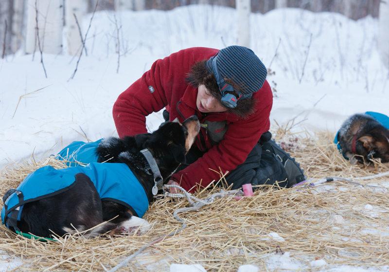 睡眠時間が限られるレース中も、彼女の姿は常に犬の傍らにあった