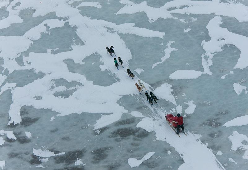 ユーコンクエストの主なルートは、凍結したユーコン川の上